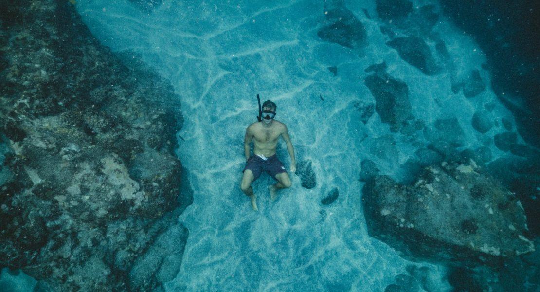 A Estratégia do Oceano Azul – versão resumida
